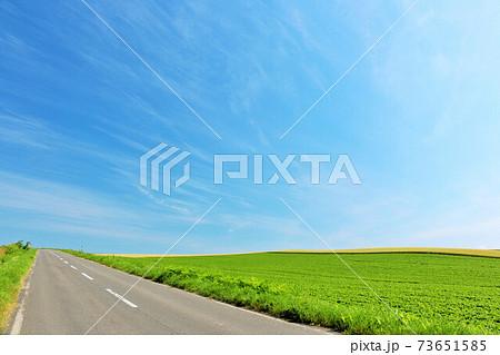 北海道 夏の青空と道 73651585