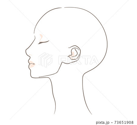 【髪なし・横向き】あごのラインがスッキリとした横顔の女性 73651908