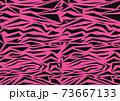 虎柄 ピンク 73667133