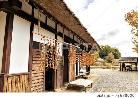 兵庫県三田市の茅葺き農家に吊るされた柿のある風景 73678006