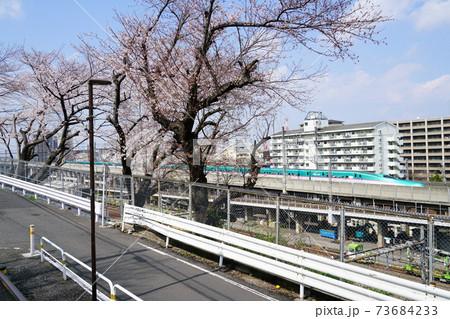 東京荒川区を走行する東北新幹線E5系・H5系電車(緑)と青空 73684233
