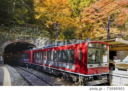 箱根登山鉄道2000形【秋の塔ノ沢駅】神奈川県 73686901