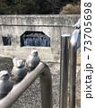 鳥もひとやすみ 73705698