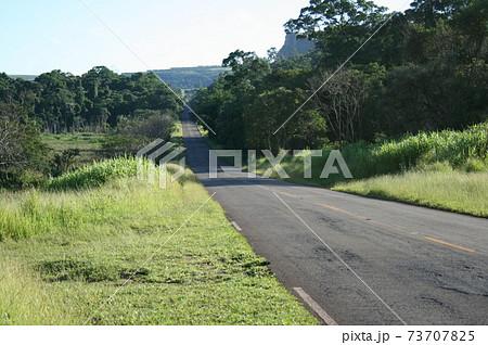 サンパウロ州の田舎の一本道 ブラジル 73707825
