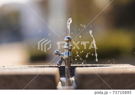 公園の水飲みから出る水の瞬間の造形 73710895