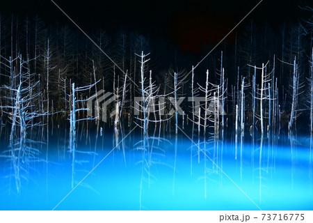 雪の降る冬にライトアップされる幻想的で美しい青い池 73716775