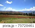 ペルー オリャンタイタンボ遺跡 73720461