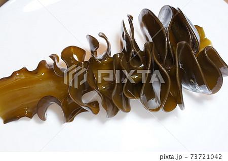 とれたて!茹でる前の茶色い新鮮な生めかぶの原型全面クローズアップ画像 73721042