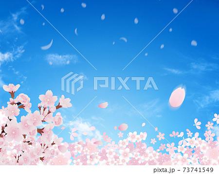 桜(背景素材) 73741549