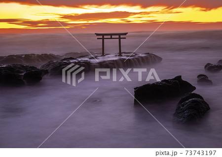 大洗海岸磯崎神社の神磯の鳥居の静寂と神秘的な夜明け 73743197