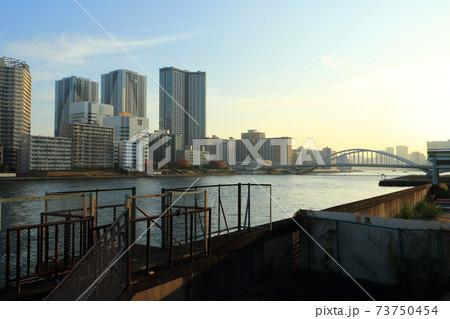 築地市場跡から望む隅田川と高層マンション群 73750454