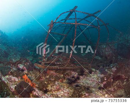 珊瑚礁に沈んだ壊れた魚の捕獲器 (メルギー諸島、ミャンマー) 73755336