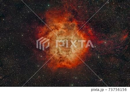 ばら星雲_2021.01.14 73756156