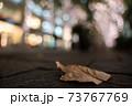 東京のイルミネーションと落ち葉 73767769