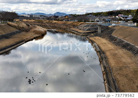 兵庫県三田市を流れる武庫川の冬風景 73779562