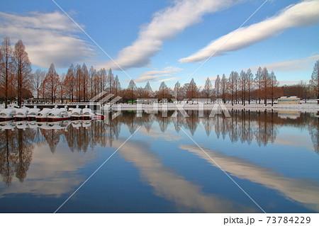 埼玉県川越市水上公園 雪の公園の池に映る雲 73784229