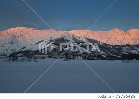 美しい朝焼けに染まる白馬連山と八方尾根スキー場と雪原 長野県白馬村 73785438