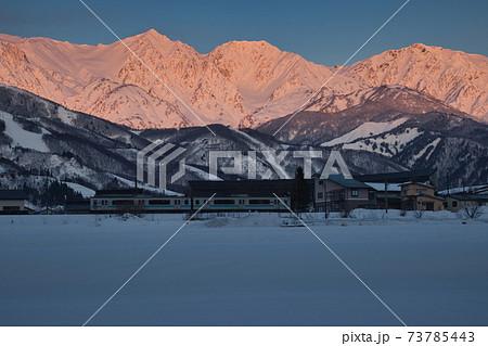 美しい朝焼けに染まる白馬三山と雪原と大糸線 長野県白馬村 73785443