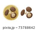 椎茸のイラスト 73788642