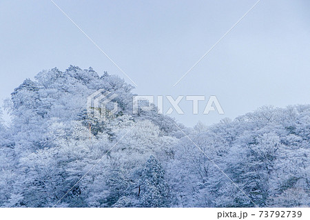 英彦山神宮から見た冬の英彦山 福岡県田川郡 73792739