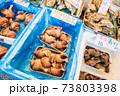 北海道・二条市場に陳列されたツブ貝などの貝類 73803398
