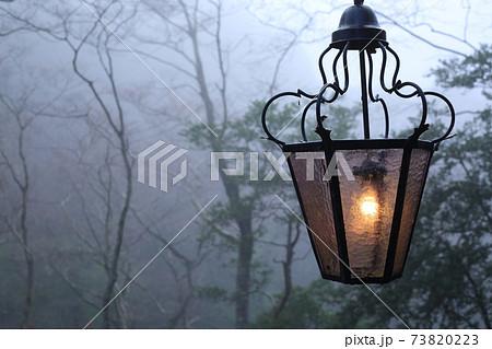 ヨーロッパの童話に出てきそうな森の中のランプ 73820223