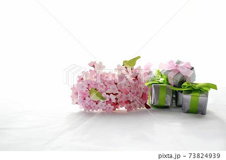春のお祝い イメージ 73824939