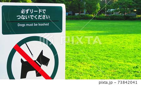 公園で犬を散歩するときの注意書き看板 73842041