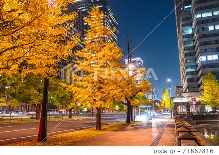《東京都》行幸通りのイチョウ並木・丸の内の街並み 73862816