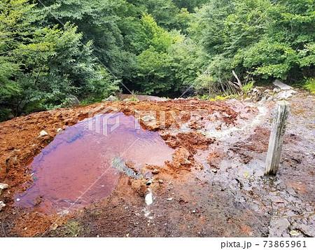 那須岳の中腹にある秘湯「御宝前の湯」の湯船 73865961