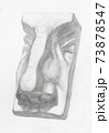 academic drawing - hand-drawn sepate male nose 73878547