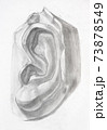 academic drawing - hand-drawn male ear shape 73878549
