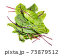 heap of fresh leaves of green Chard isolated 73879512