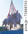 冷凍されたマグロを船から荷下ろし 73888743