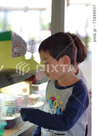 小さな動物のカゴを指差している4歳の子供 73888837