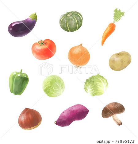 野菜のベクター水彩イラストセット 73895172