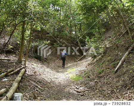 勝尾寺古参道を歩く、西国霊場徒歩巡礼 73928632