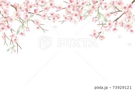 桜 73929121