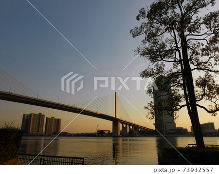 バンコクのチャオプラヤ河とラマ9世橋の夕暮れ 73932557