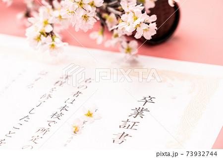 卒業証書と丸筒と桜 73932744