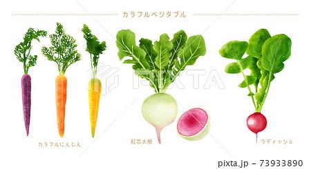 水彩イラスト カラフル野菜セット 73933890