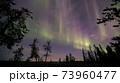 オーロラ、AURORA 73960477