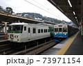東海道本線 185系特急踊り子号と伊豆急8000系 73971154