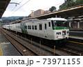 東海道本線 185系特急踊り子号 修善寺行発車 73971155