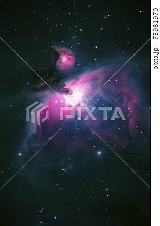 オリオン座大星雲 73981970