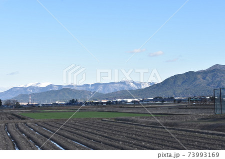 滋賀県彦根市から望む雪山と田園風景 73993169