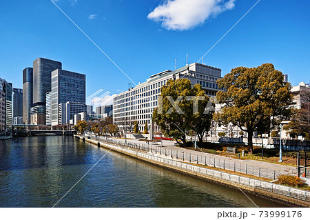 大阪中之島公園 栴檀の木橋から見る大阪市役所と高層ビル群 73999176