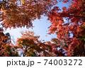 庭園の青空と紅葉 74003272