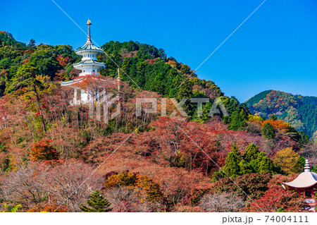 (埼玉県)秋の白雲山鳥居観音 玄奘三蔵塔 74004111