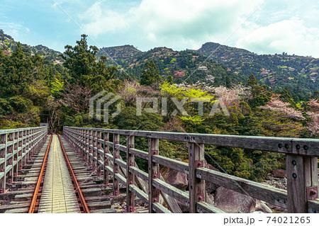 山桜と新緑と小杉谷橋の絶景。国立公園屋久島 74021265